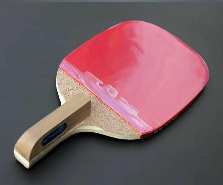 Table Wood Pingpong Donic Sport Fitness